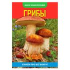 "Mini-encyclopedia ""Mushrooms"", 20 pages"