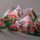 Лента репсовая «Бабочка на розах», 25 мм, 18 ± 1 м, разноцветная