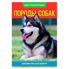 Мини-энциклопедия «Собаки», 20 страниц