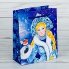 Пакет ламинированный вертикальный «Снегурочка», 23 × 27 × 8 см