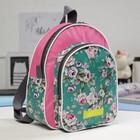 Рюкзак детский, отдел на молнии, наружный карман, цвет бирюзовый