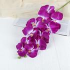 """Цветы искусственные """"Орхидея Галатея"""" 95 см, сиреневая"""