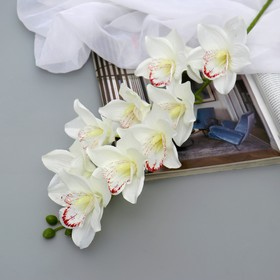 "Artificial flowers ""Orchid of amabilis"" 90 cm, white"