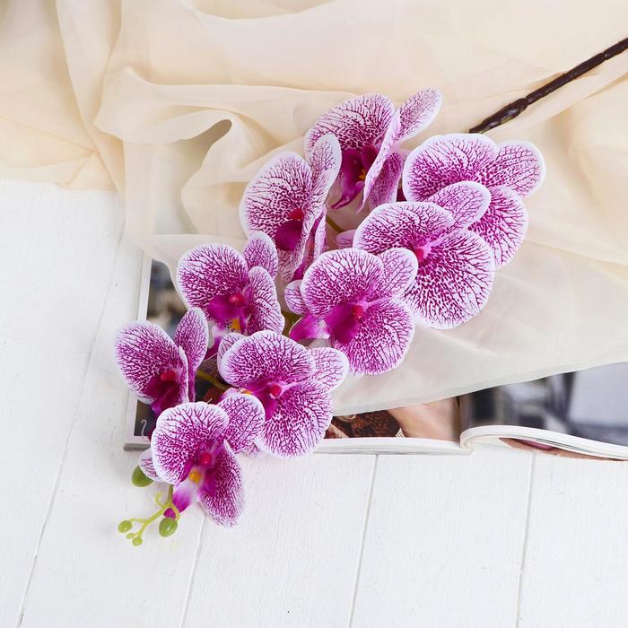 """Цветы искусственные """"Орхидея Тигровая"""" 90 см, бело-сиреневая"""