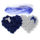 Бело-синий