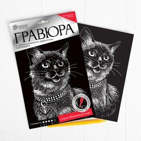 "Engraving ""Siamese cat"" metallic effect silver 15 x 21 cm"