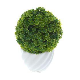 Бонсай 11*9 см круглые листочки