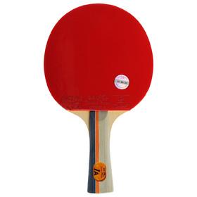 Ракетка для настольного тенниса  Double Fish (1A-C серия) Ош