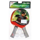 Набор для настольного тенниса Double Fish 2 ракетки и 3 мяча (301)