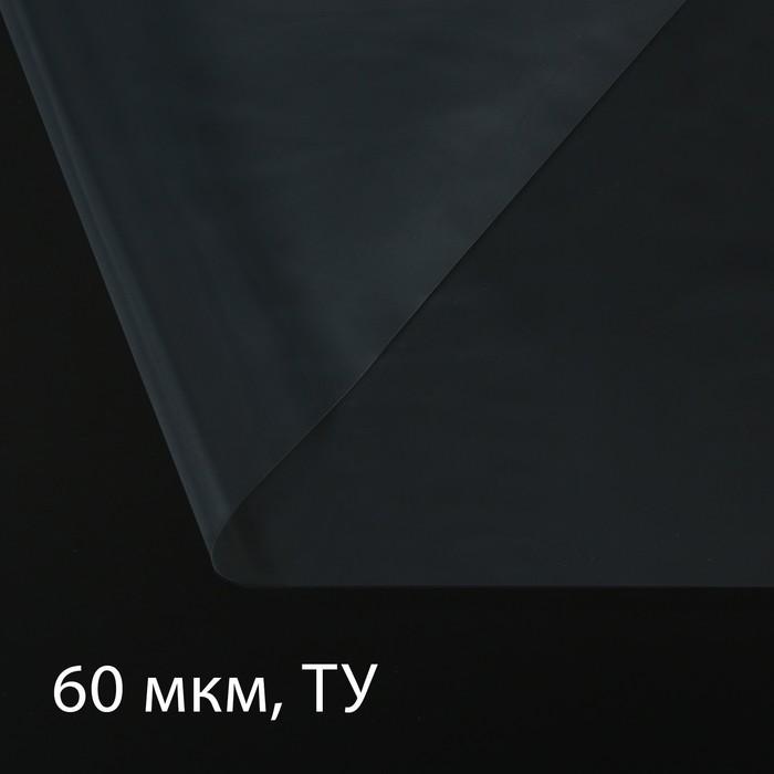 Плёнка полиэтиленовая, толщина 60 мкм, 3 × 10 м, рукав, прозрачная, Эконом