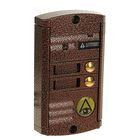 Вызывная панель Activision AVP-452 (PAL),  600 ТВЛ, 2 абонента, медь