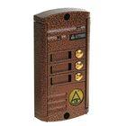 Вызывная панель Activision AVP-453 (PAL),  600 ТВЛ, 3 абонента, медь