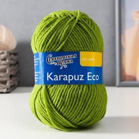 Пряжа Karapuz Eco (КарапузЭко) 90% акрил, 10% капрон 125м/50гр аспарагус (323)