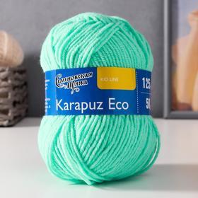 Пряжа Karapuz Eco (КарапузЭко) 90% акрил, 10% капрон 125м/50гр весна (899)