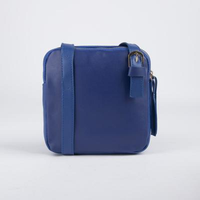 Bag, 2 Department zip, adjustable strap, color blue