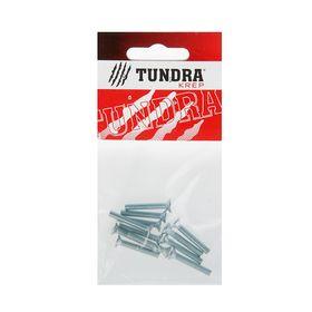 Винт DIN965 TUNDRA krep, с потайной головкой, М4х25 мм, оцинкованный, 12 шт. Ош