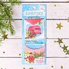 Конверты для скрапбукинга в наборе «Теплый Новый год», 6 × 15 см