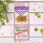 """Набор декоративных мини-конвертиков """"Новогодняя посылка"""", 6 х 15 см"""