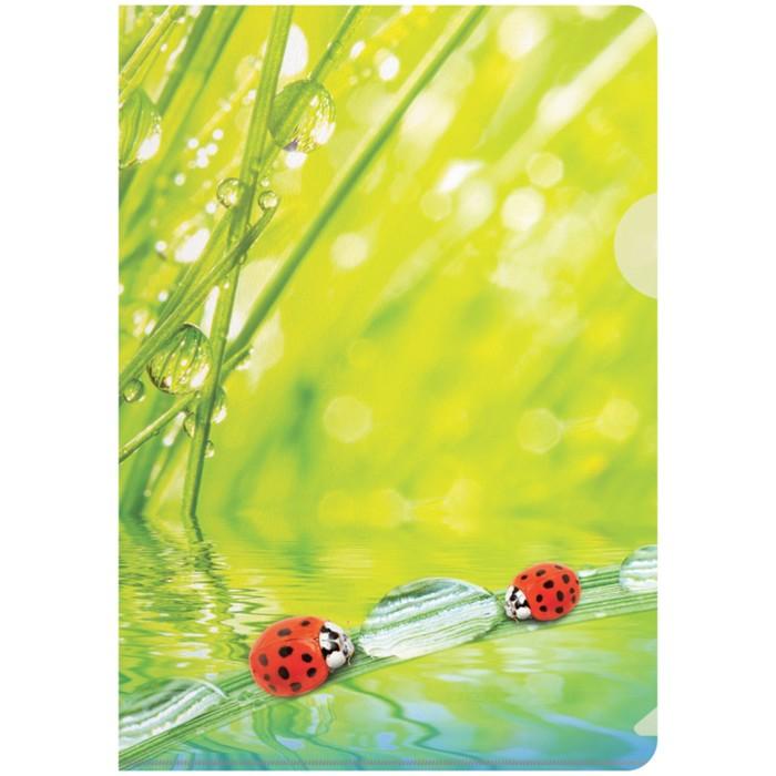 Папка-уголок А4, 180 мкм Ladybird
