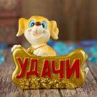 "Souvenir Polyresin ""Puppy with a gold bone - Luck"" MIX 7x7,9х4,6 cm"