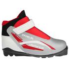 Ботинки лыжные TREK Distance Control SNS ИК, цвет серебряный, лого красный, размер 38
