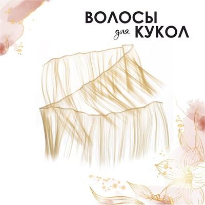 Волосы - тресс для кукол «Прямые» длина волос: 15 см, ширина:100 см, цвет № 613