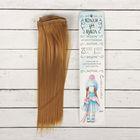 """Волосы - тресс для кукол """"Прямые"""" длина волос 25 см, ширина 100 см, цвет № 16А"""