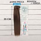 """Волосы - тресс для кукол """"Прямые"""" длина волос 25 см, ширина 100 см, цвет № 6К"""