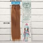 """Волосы - тресс для кукол """"Прямые"""" длина волос 25 см, ширина 100 см, цвет № 30"""