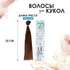 """Волосы - тресс для кукол """"Прямые"""" длина волос 25 см, ширина 100 см, цвет № 6"""
