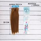 """Волосы - тресс для кукол """"Прямые"""" длина волос 25 см, ширина 100 см, цвет № 28В"""