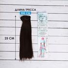 """Волосы - тресс для кукол """"Прямые"""" длина волос 25 см, ширина 100 см, цвет № 4"""