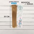 """Волосы - тресс для кукол """"Прямые"""" длина волос 25 см, ширина 100 см, цвет № 22Т"""