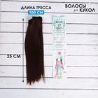 """Волосы - тресс для кукол """"Прямые"""" длина волос 25 см, ширина 100 см, цвет № 6А"""