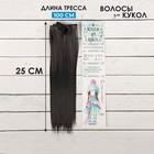 """Волосы - тресс для кукол """"Прямые"""" длина волос 25 см, ширина 100 см, цвет № 2В"""
