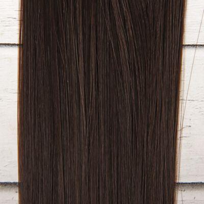Волосы - тресс для кукол «Прямые» длина волос: 25 см, ширина: 100 см, цвет № 10