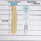 """Волосы - тресс для кукол """"Прямые"""" длина волос 25 см, ширина 100 см, цвет № 613"""