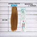 """Волосы - тресс для кукол """"Прямые"""" длина волос 25 см, ширина 100 см, цвет № 26"""