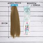 """Волосы - тресс для кукол """"Прямые"""" длина волос 25 см, ширина 100 см, цвет № 24"""