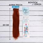 """Волосы - тресс для кукол """"Прямые"""" длина волос 25 см, ширина 100 см, цвет № 13"""