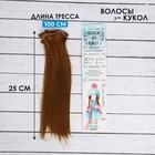 """Волосы - тресс для кукол """"Прямые"""" длина волос 25 см, ширина 100 см, цвет № 27А"""