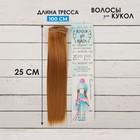 """Волосы - тресс для кукол """"Прямые"""" длина волос 25 см, ширина 100 см, цвет № 27В"""