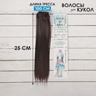 """Волосы - тресс для кукол """"Прямые"""" длина волос 25 см, ширина 100 см, цвет № 2"""
