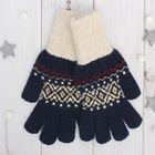 """Перчатки одинарные мужские """"Аскет 2"""", размер 22, цвет тёмно-синий/бежевый 2с230"""