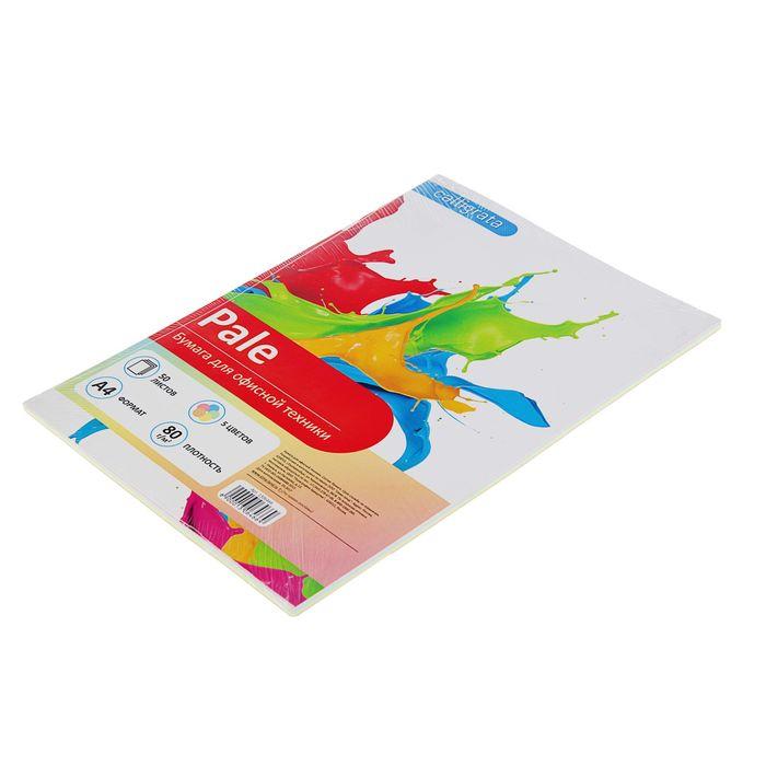 Бумага цветная А4, 50 листов Calligrata Пастель, 5 цветов, 80 г/м² - фото 366917094