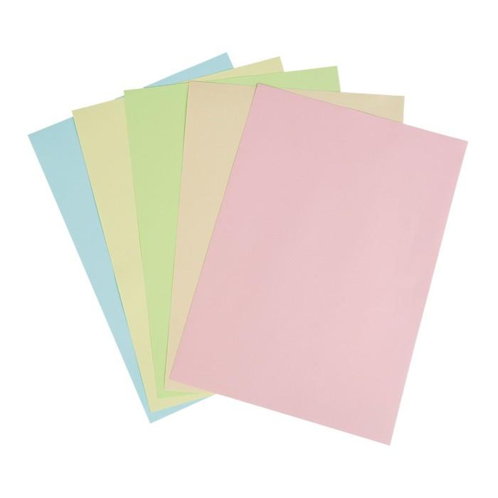 Бумага цветная А4, 50 листов Calligrata Пастель, 5 цветов, 80 г/м² - фото 366917095