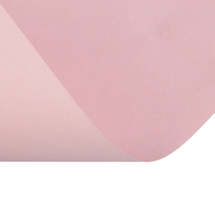 Бумага цветная А4, 50 листов Calligrata Пастель, 5 цветов, 80 г/м² - фото 366917096