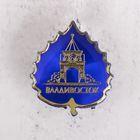 """Icon """"Vladivostok"""""""