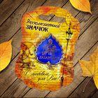 Значок «Хабаровск» - фото 7471425