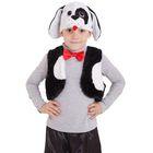"""Карнавальный костюм """"Щенок-черныш"""", шапка, жилет, галстук-бабочка, плюш, мех, 3-5 лет, рост 98-110 см"""